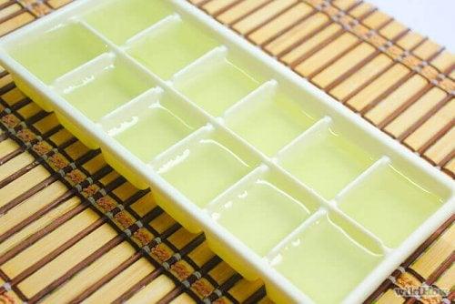 Congélation pour conserver le gel d'aloe vera