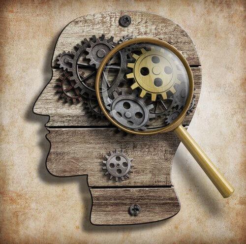 secrets-du-cerveau