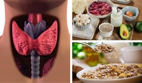 Qu'est-ce que l'hypothyroïdie? Comment la combattre avec l'alimentation?
