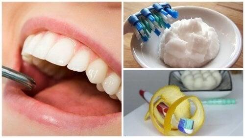 6 astuces maison pour enlever le tartre accumul sur les dents am liore ta - Comment enlever le tartre dans les wc ...