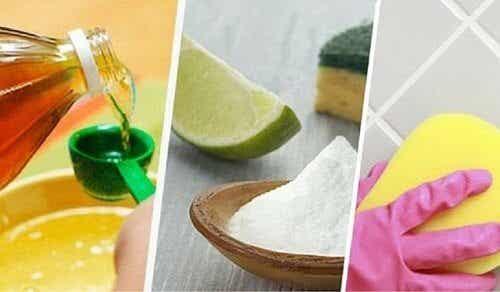 Remèdes naturels pour nettoyer les joints des carreaux