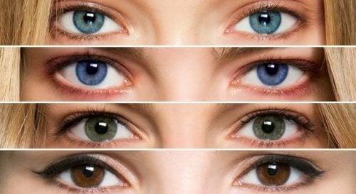 Que dit la couleur de vos yeux sur votre santé ?