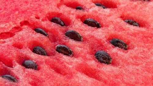 Découvrez tous les bienfaits des graines de pastèque