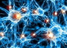 Ils-peuvent-prevenir-Alzheimer-500x350