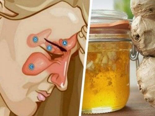 Deux ingrédients pour soulager la sinusite