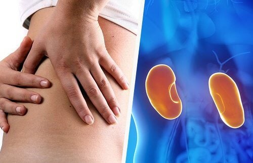 7 signes qui alertent d'une maladie des reins