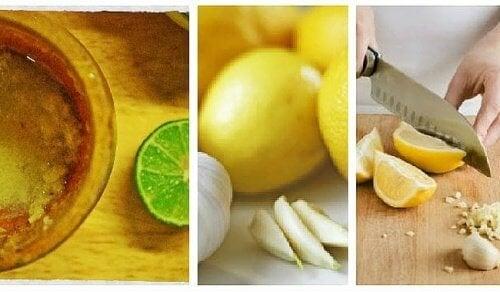Un rem de maison l 39 ail et au citron pour combattre la graisse abdominal - Combattre humidite maison ...