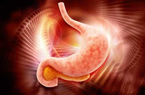 Une technique pour détecter le cancer de l'estomac en deux heures est développée