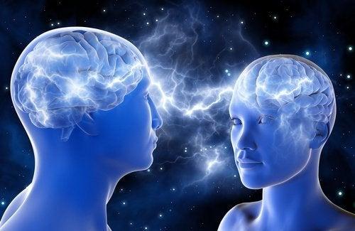 Le cerveau et l'attirance.