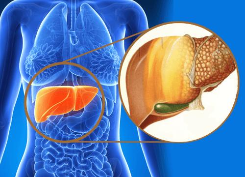 9 signes qui avertissent d'une accumulation de toxines dans le foie