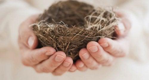Le syndrome du nid vide : quand la solitude imprègne le foyer
