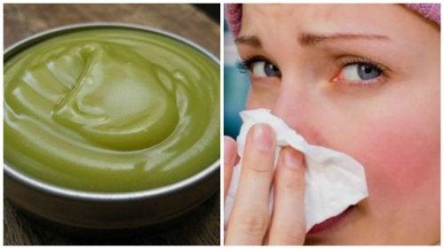 Préparez un onguent naturel pour décongestionner les voies respiratoires