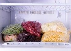 aliments-congeles-500x334