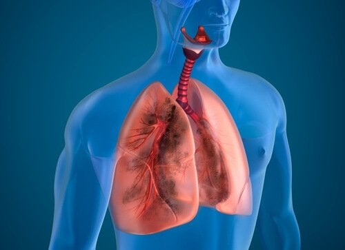 10 ingrédients naturels capables de purifier les poumons des fumeurs