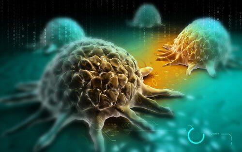 diminuer-le-risque-de-cancer-500x313