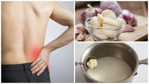 Le lait d'ail contre la sciatique : une recette infaillible !