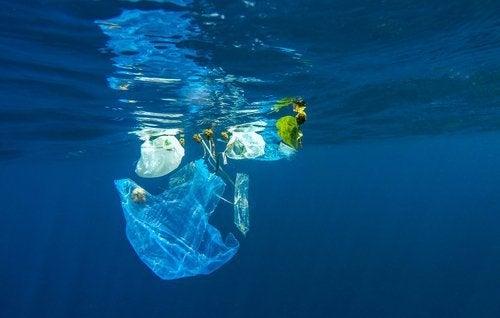 plastique-polluant-500x318
