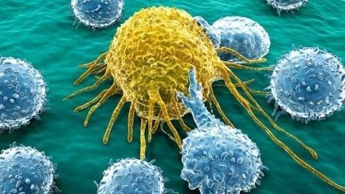 Le risque de développer un cancer lié à l'hérédité est faible.