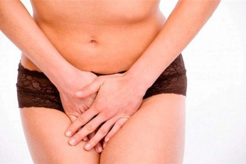 8 aliments que vous devez manger pour prendre soin de votre flore vaginale