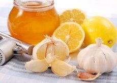 remede-ail-et-citron-500x335