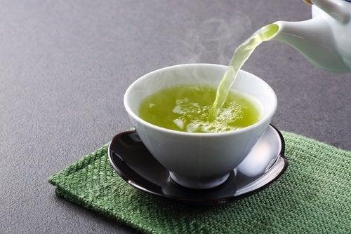 le thé vert pour stimuler la connectivité neuronale