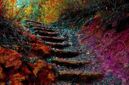L'escalier de la vie : se dépasser chaque jour en 5 étapes