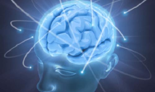cerveau-sain