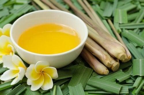 L'huile de citronnelle : un excellent répulsif contre les moustiques, les poux et les puces