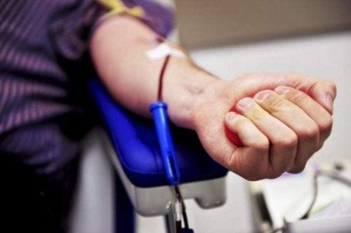 Moelle osseuse : comment devenir donneur ?