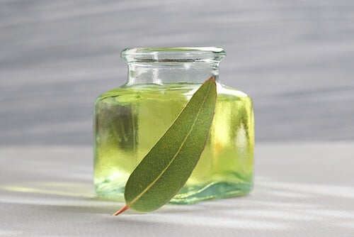 huile d'eucalytus contre la rhinite allergique