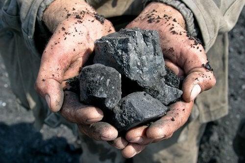utilisations fascinantes du charbon de bois : éliminer les odeurs