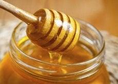 tout-savoir-miel