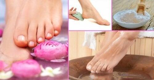 La cuvette pour les pieds avec le microorganisme végétal