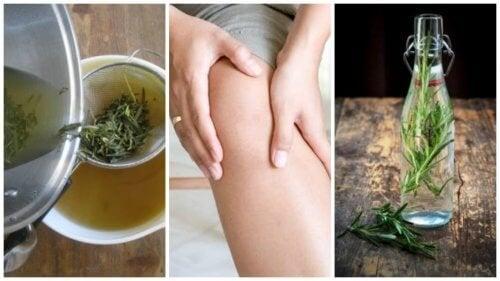 Associez deux anti-inflammatoires naturel pour luttez contre les douleurs articulaires