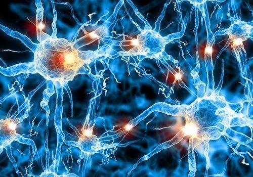 Alzheimer : il existe un diagnostic précoce