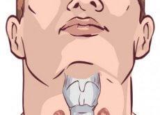 thyroide-fragilisee