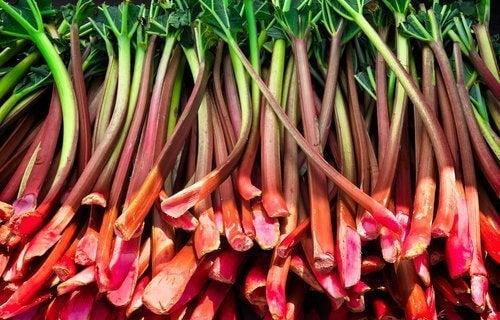 Comment améliorer la santé de la thyroïde naturellement avec la rhubarbe
