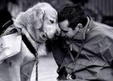 chien-assistant-un-patient-500x304