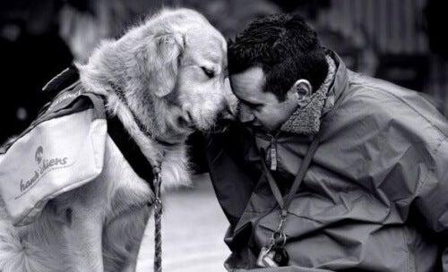 Un chien peut vous aider à combattre votre nostalgie