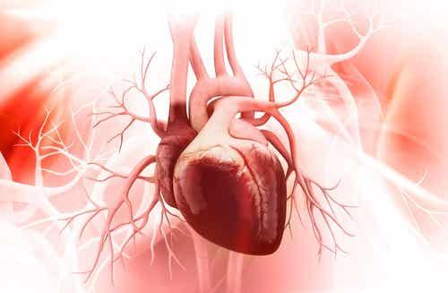 La cardiopathie de l'impact émotionnel : 5 astuces contre le syndrome du coeur brisé