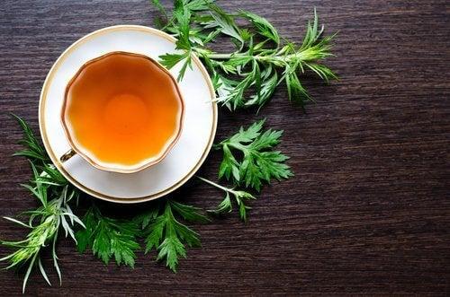 L'absinthe, une plante méconnue pour lutter contre les puces