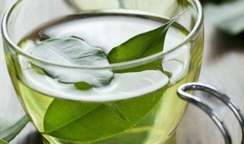 14 aliments pour soulager l'arthrite : le thé vert