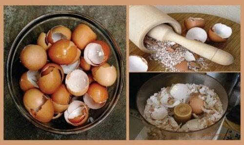 Découvrez 6 remèdes naturels intéressants à base de coquille d'œuf