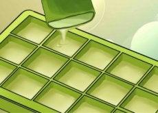bienfaits-congeler-aloe-vera-500x292