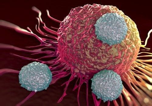 cancer-500x350
