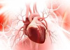 comment-prendre-soin-de-votre-coeur