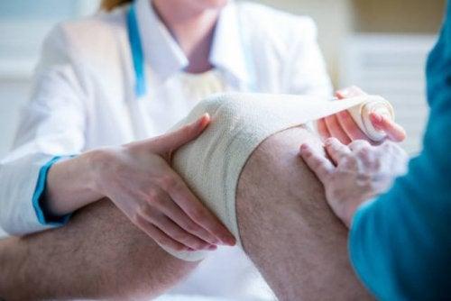 Un « pansement vivant » de cellules mères pour traiter les lésions aux genoux
