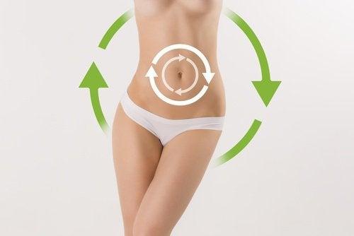 Comment améliorer votre métabolisme?