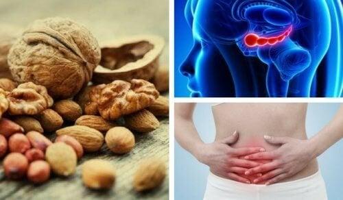 7 bienfaits méconnus des noix