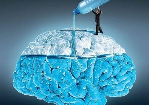 5 merveilleux effets de l'eau sur le cerveau